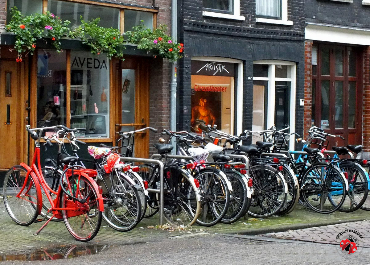 Bicycles in Amsterdam - Everyday Wanderer - Sage