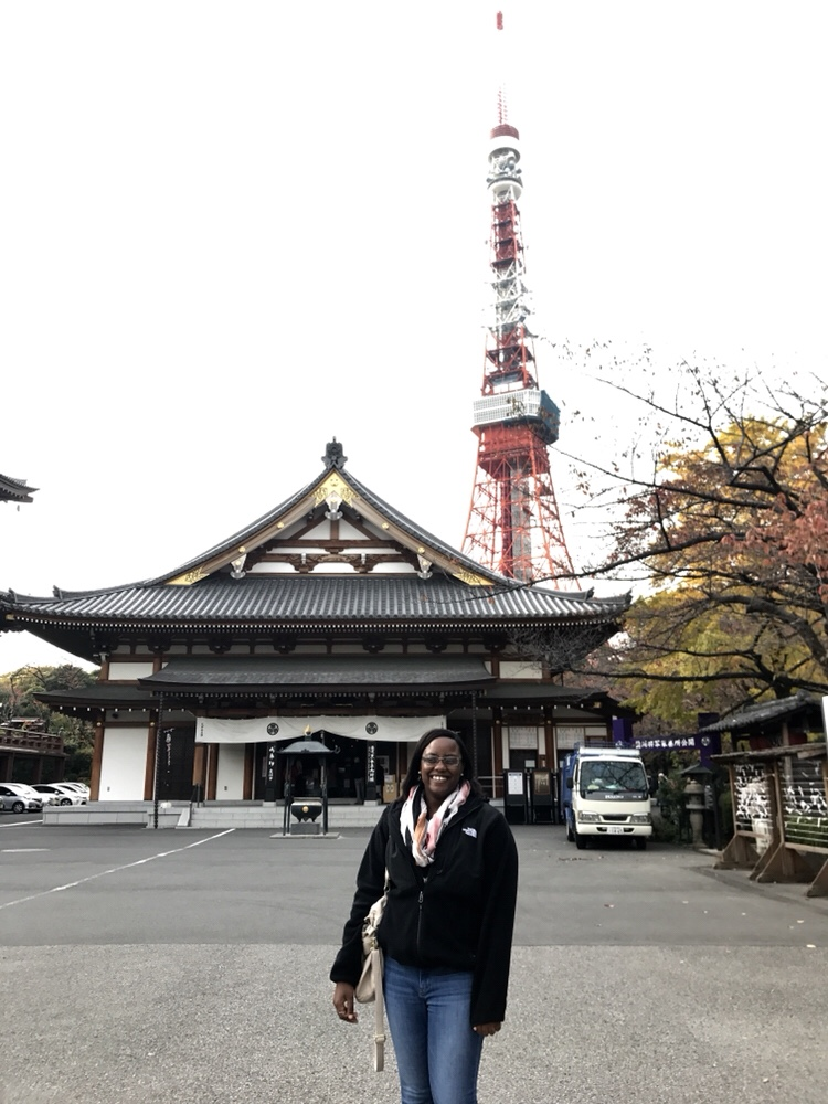 Zozoji Temple and Tokyo Tower - Photo Essay of Japan