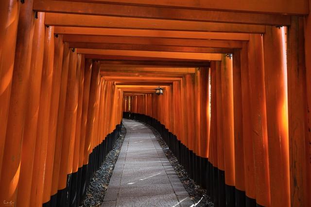 Japan-Kyoto-Fushimi-Inari-1-1 - Nicola