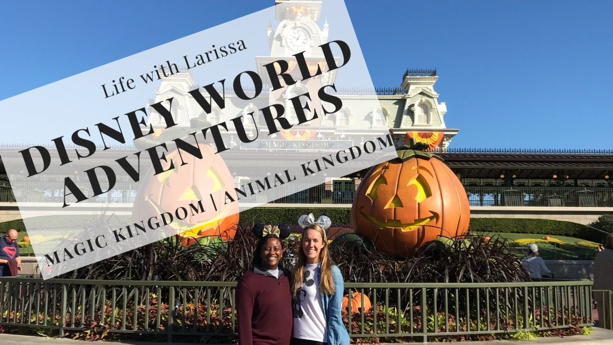 Disney World Adventures: Magic Kingdom & Animal Kingdom